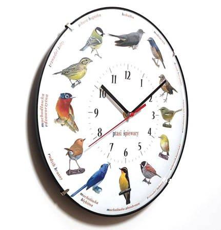Zegar dla dzieci ścienny PTAKI ATE900PP BL SW